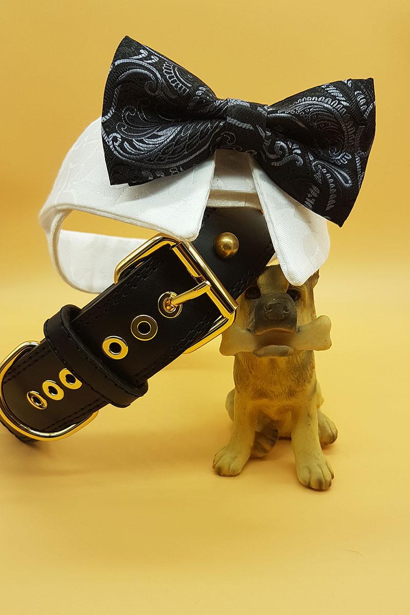 Dogsitter-per-matrimoni.jpg