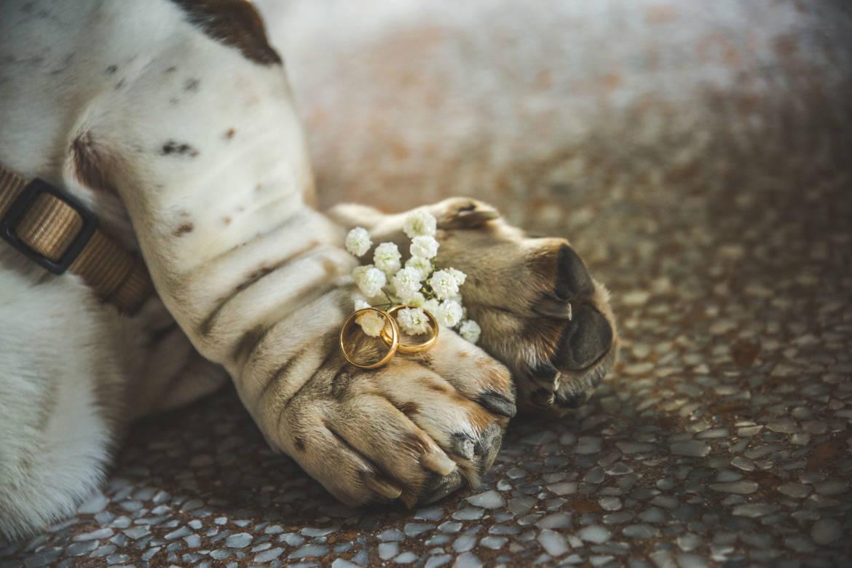 Matrimonio-Annamaria-e-Filippo-401.jpg