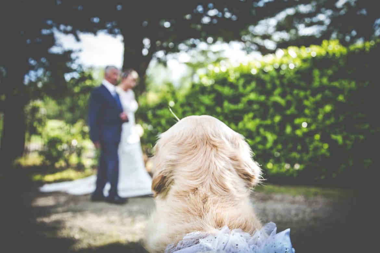 Matrimonio-Ivano-e-Monica-59.jpg