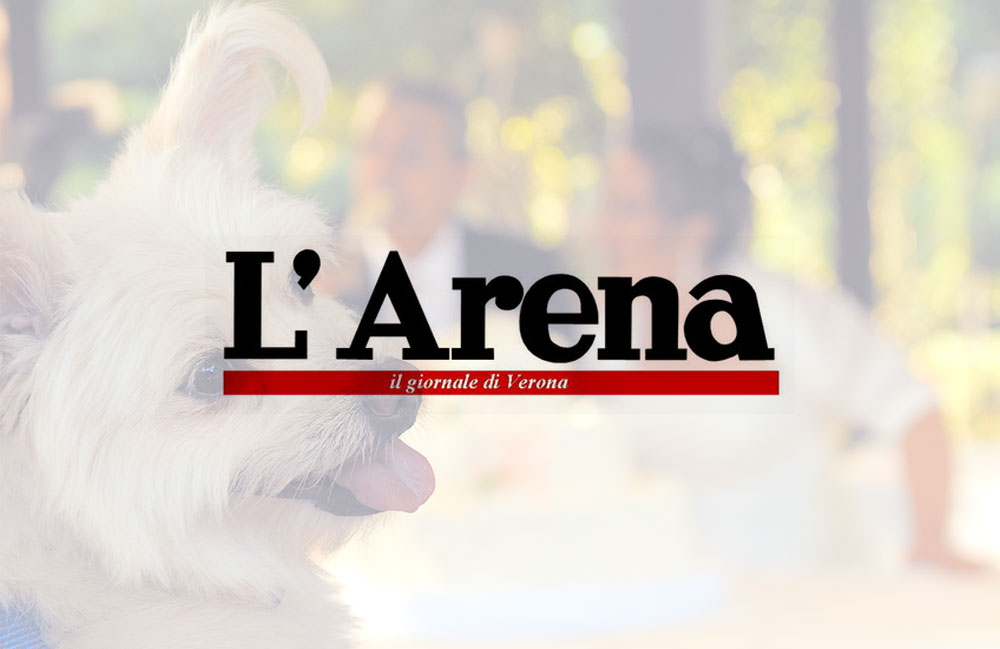 L'arena: giornale di Verona