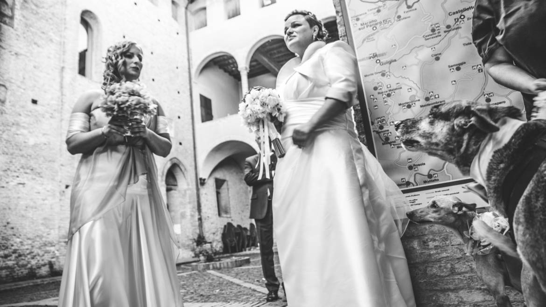Wedding a Bologna con servizio dog sitter by Athena