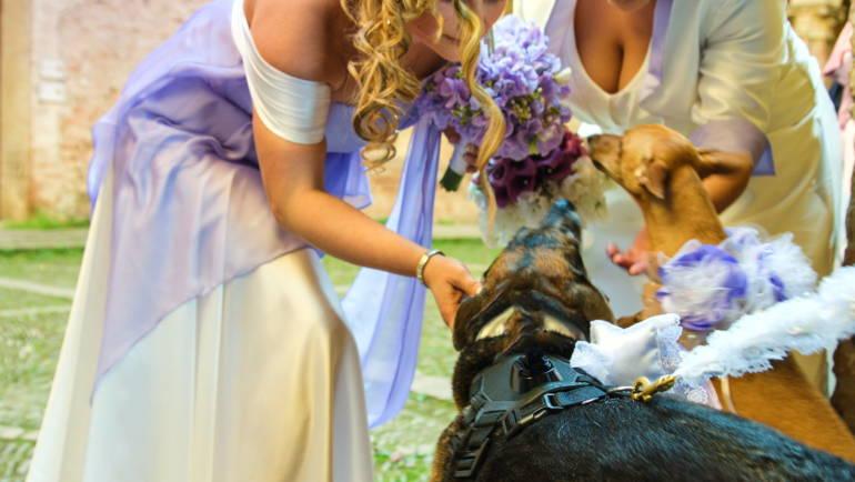 """La rivista mensile """"Vivaboy"""" parla dell'Unione di Mara e Claudia e del servizio wedding dog sitter di Athena"""