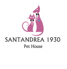 santandrea_dog-sitter-per-matrimoni-3.png
