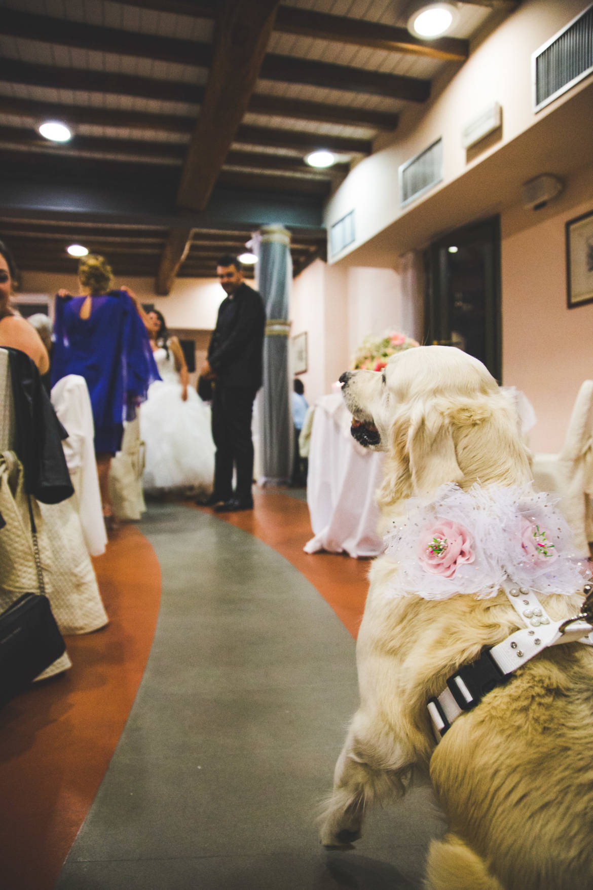 Matrimonio-Mauro-e-Silvia_-336.jpg