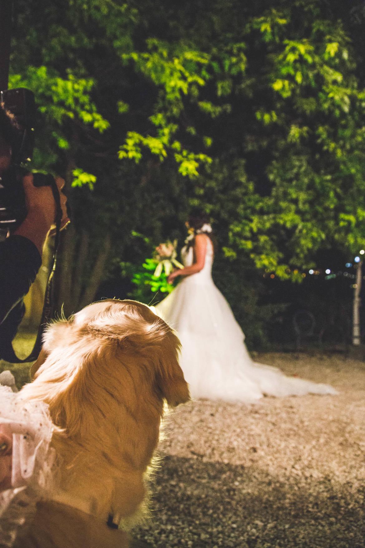Matrimonio-Mauro-e-Silvia_-359.jpg