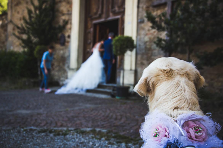 Matrimonio-Mauro-e-Silvia_-38.jpg