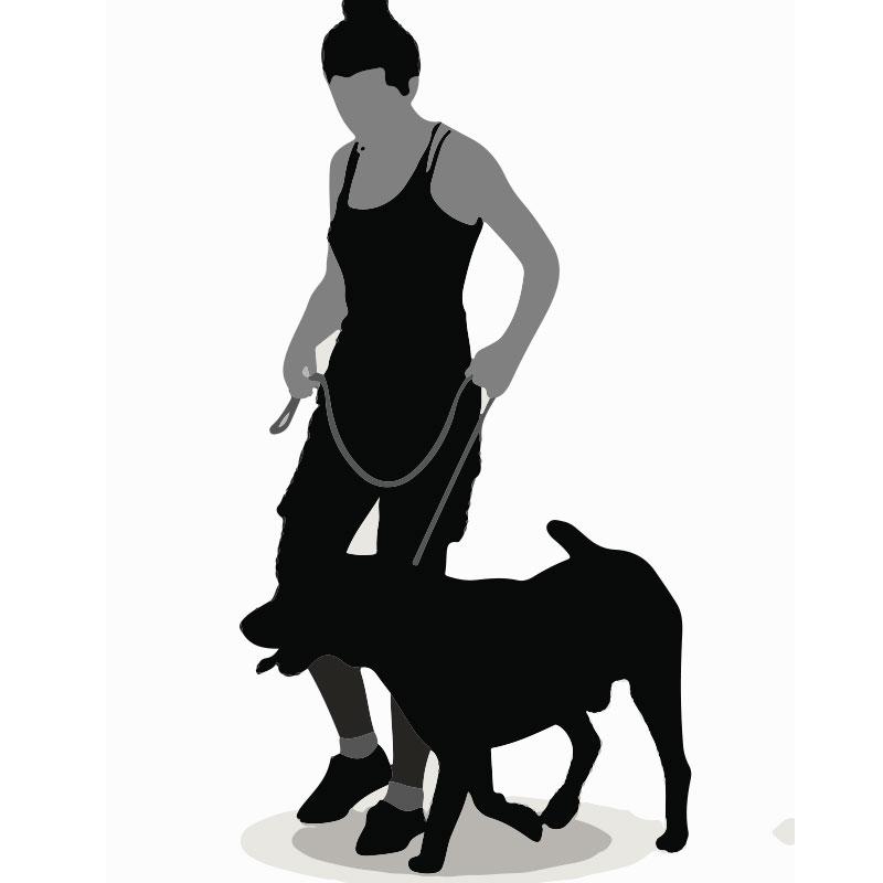 dogsitter-passeggiata.jpg