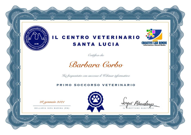 dogsitter-certificazione.jpg